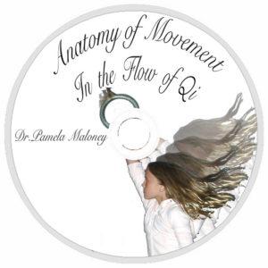 Anatomy of Movement - DVD