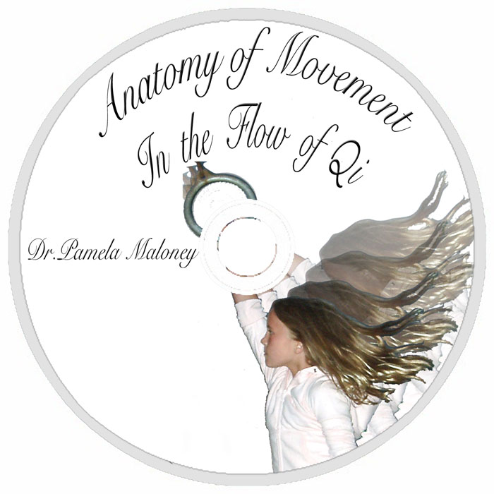 Dvd Anatomy Of Movement In The Flow Of Qi Chi Dr Pamela
