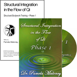 Structural Integration Flow of Chi