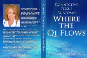 Connective Tissue - Anatomy of Qi